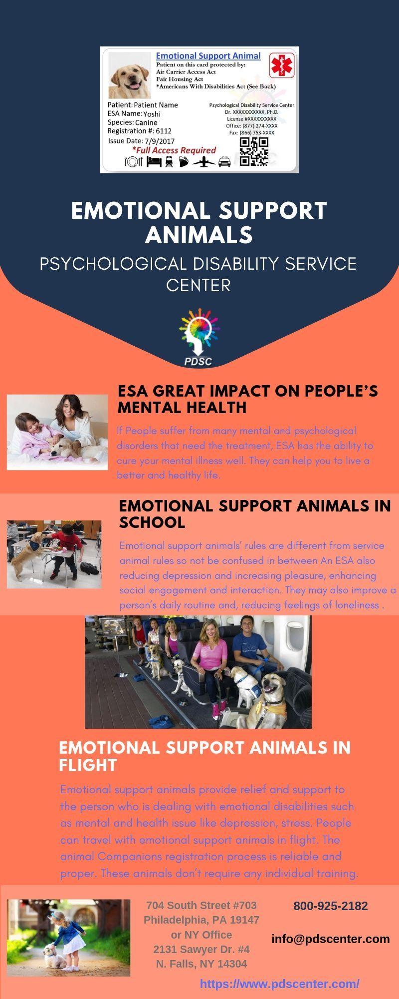 Service Dog Doctor Letter Emotional Support Animal Emotional Support Esa Letter