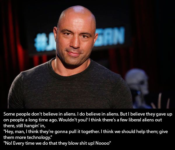 joe rogan quote joe rogan joe rogan quotes joe rogan experience