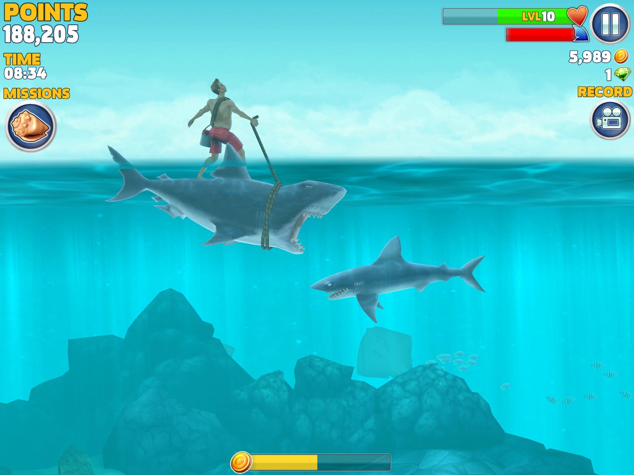 The Kingofsummer Shark Rider 2014 Hungry Shark