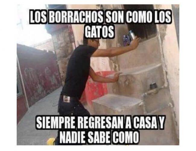 Frases Chistosas De Borrachos Para Facebook Funny Friday Memes Funny Photos Of People Humor