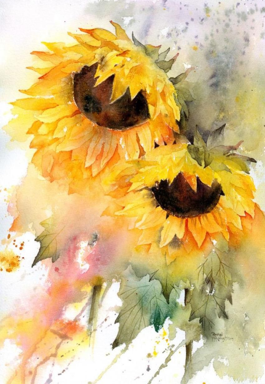 Sunflower Duo Sunflower Watercolor Painting Sunflower Painting