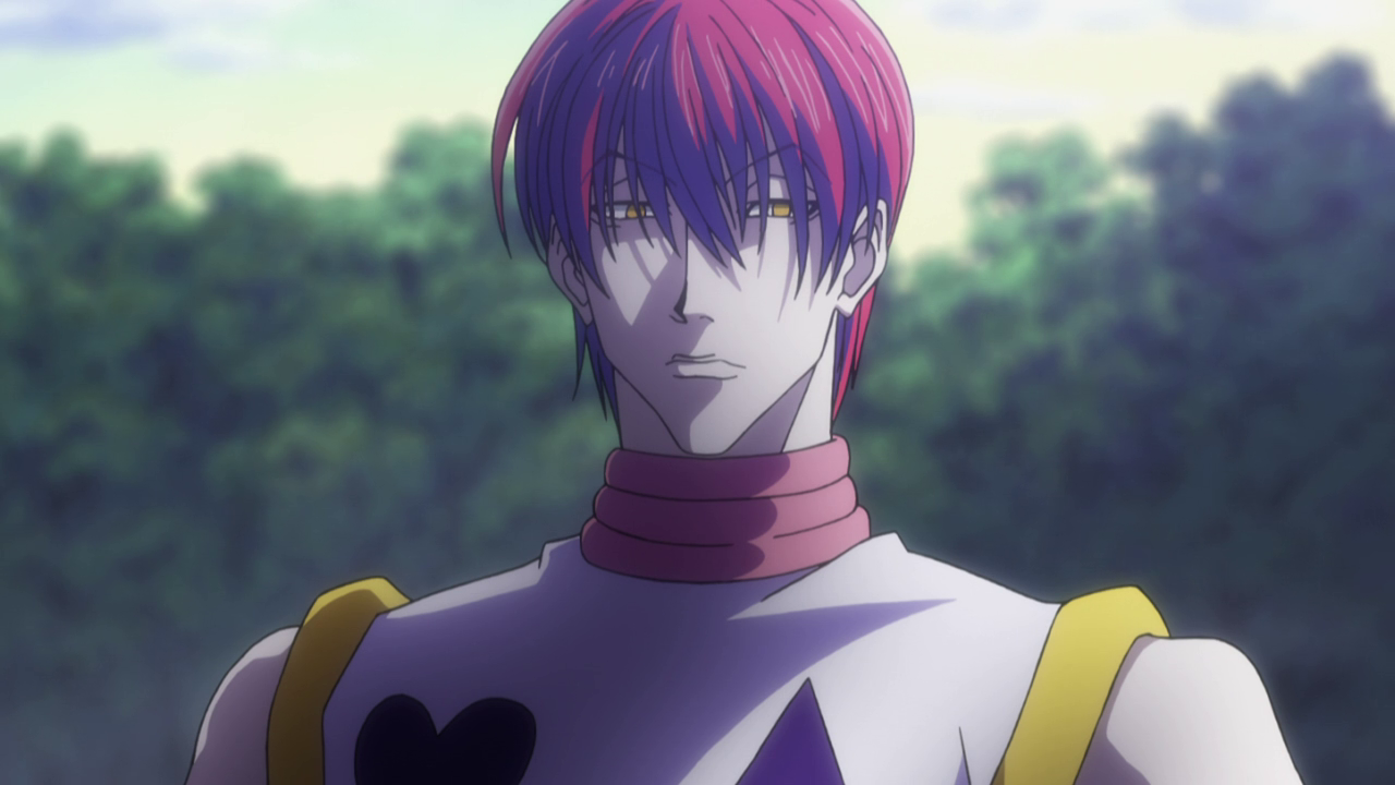 Hunter X Hisoka With His Hair Down