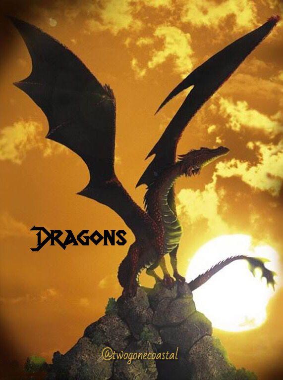 Dragons @twogonecoastal