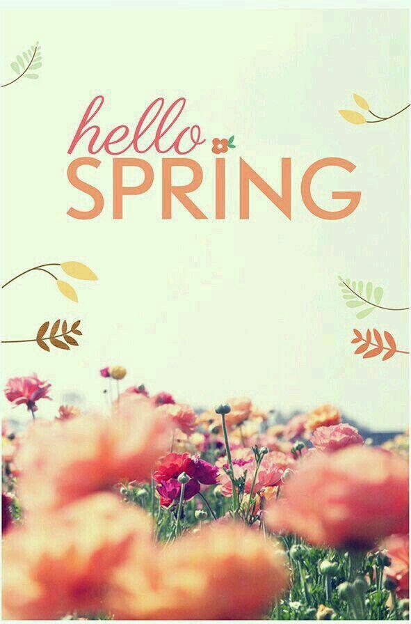 Hello indeed!