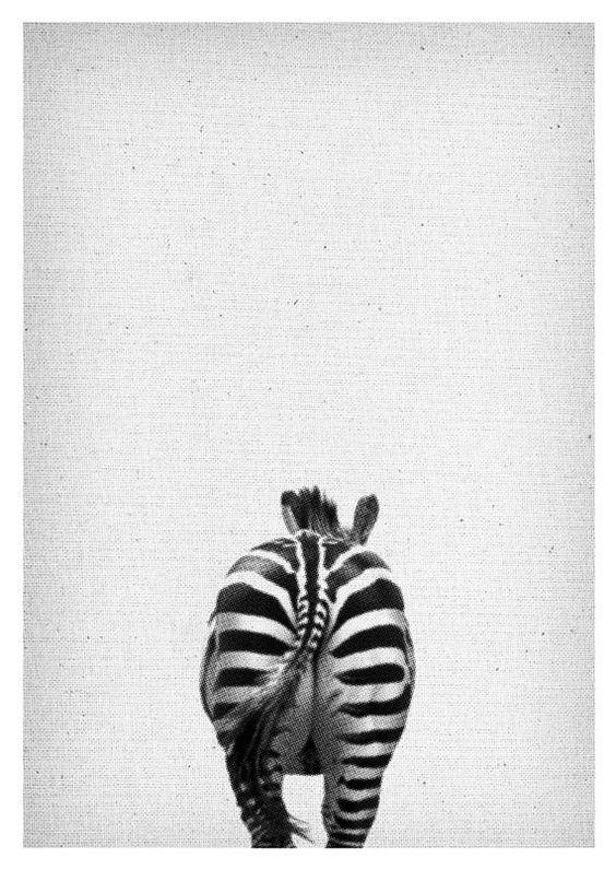 Zebra Print - Safari Kindergarten Wall Art, Africa Tier, schwarz - wohnzimmer deko schwarz weiss