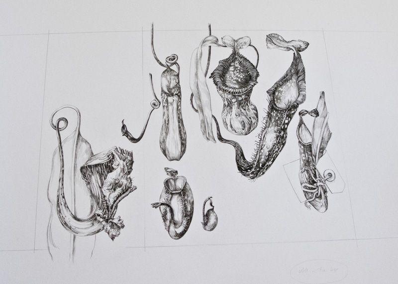 Eunike Nugroho: A Drawing Class with Sarah Simblet | A LEVEL ART ...