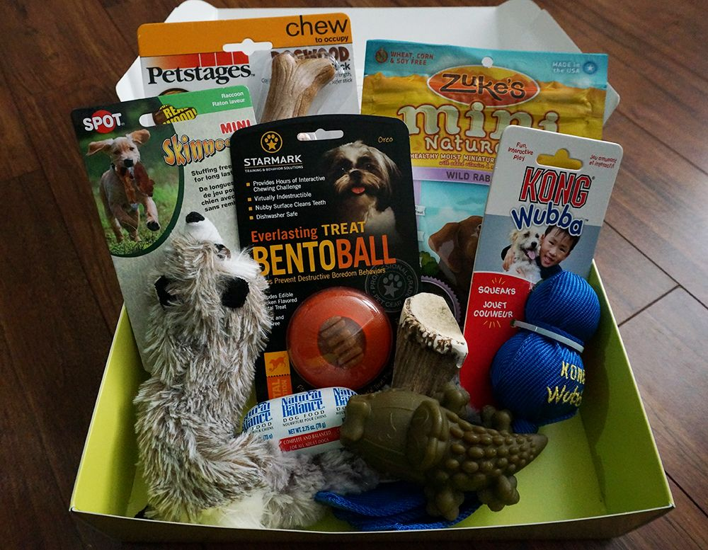Sniff Through The Exclusive Pawsitive Beginnings Box For Dogs Each Box Features Some Of Our Favorite Pet Products And 50 Worth O Food Animals Pets Your Pet