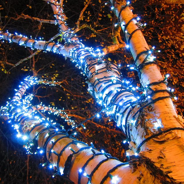 Carlisle Christmas Lights 2012 by ambo333, via Flickr