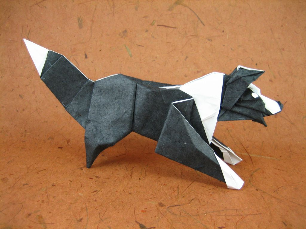 Border collie origami origami paper and diagram border collie by quentin origami jeuxipadfo Choice Image