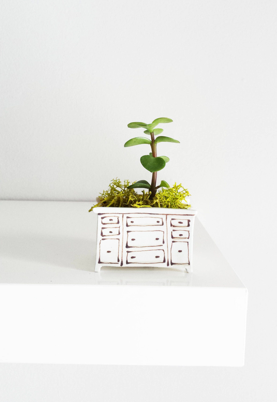 Mini dresser vase for plants. Perfect cactus or succulent