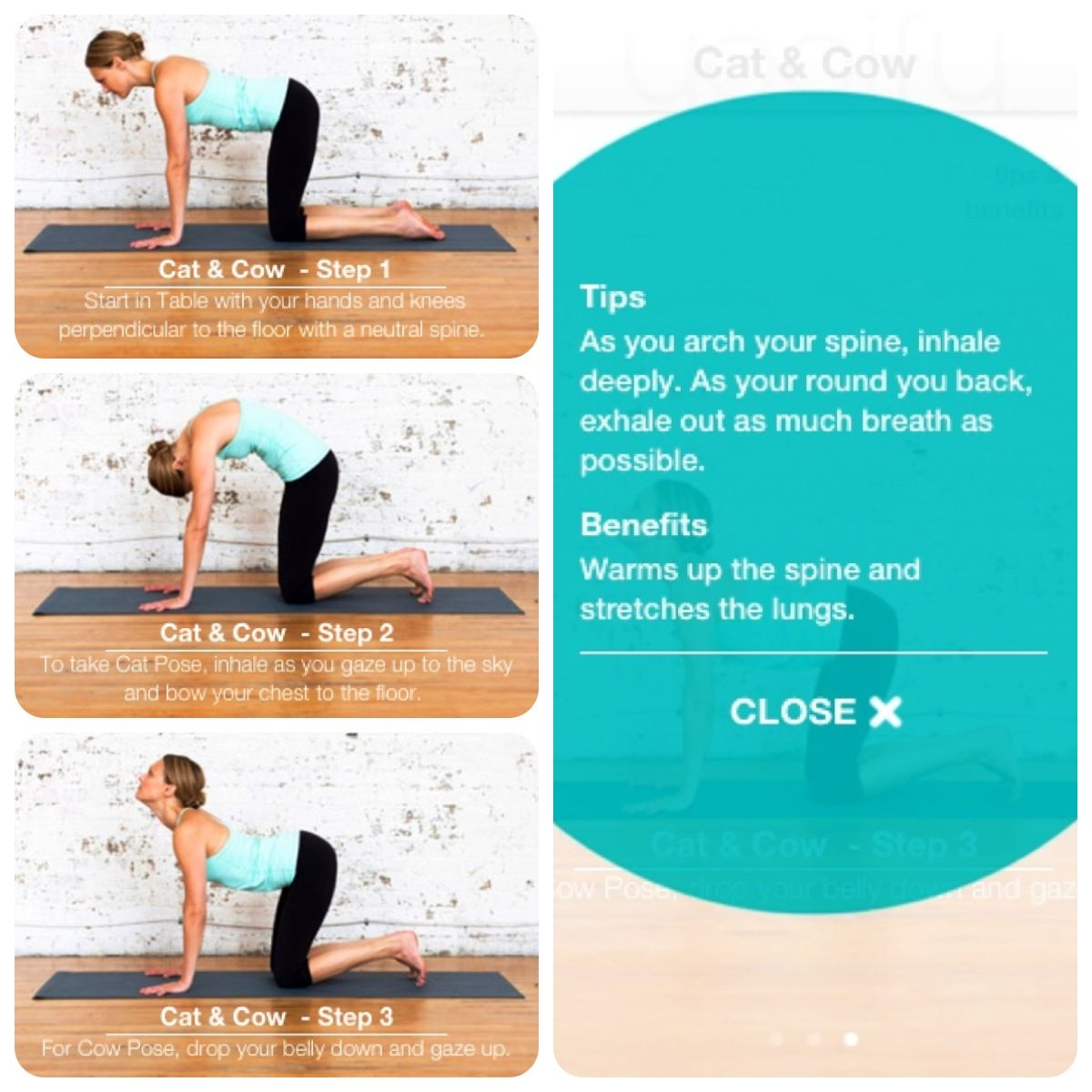 Slow down your practice with this asana. CatCow