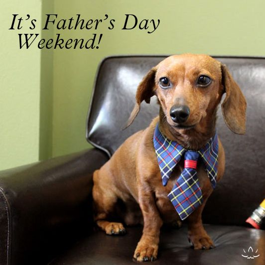 fathers day weekend - 532×532