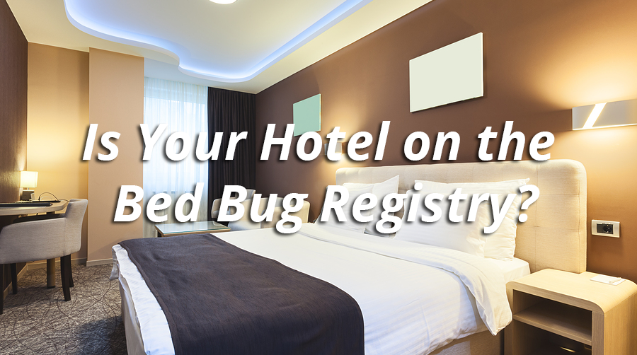 Is Your Hotel on the Bed Bug Registry? Bed Bug Control