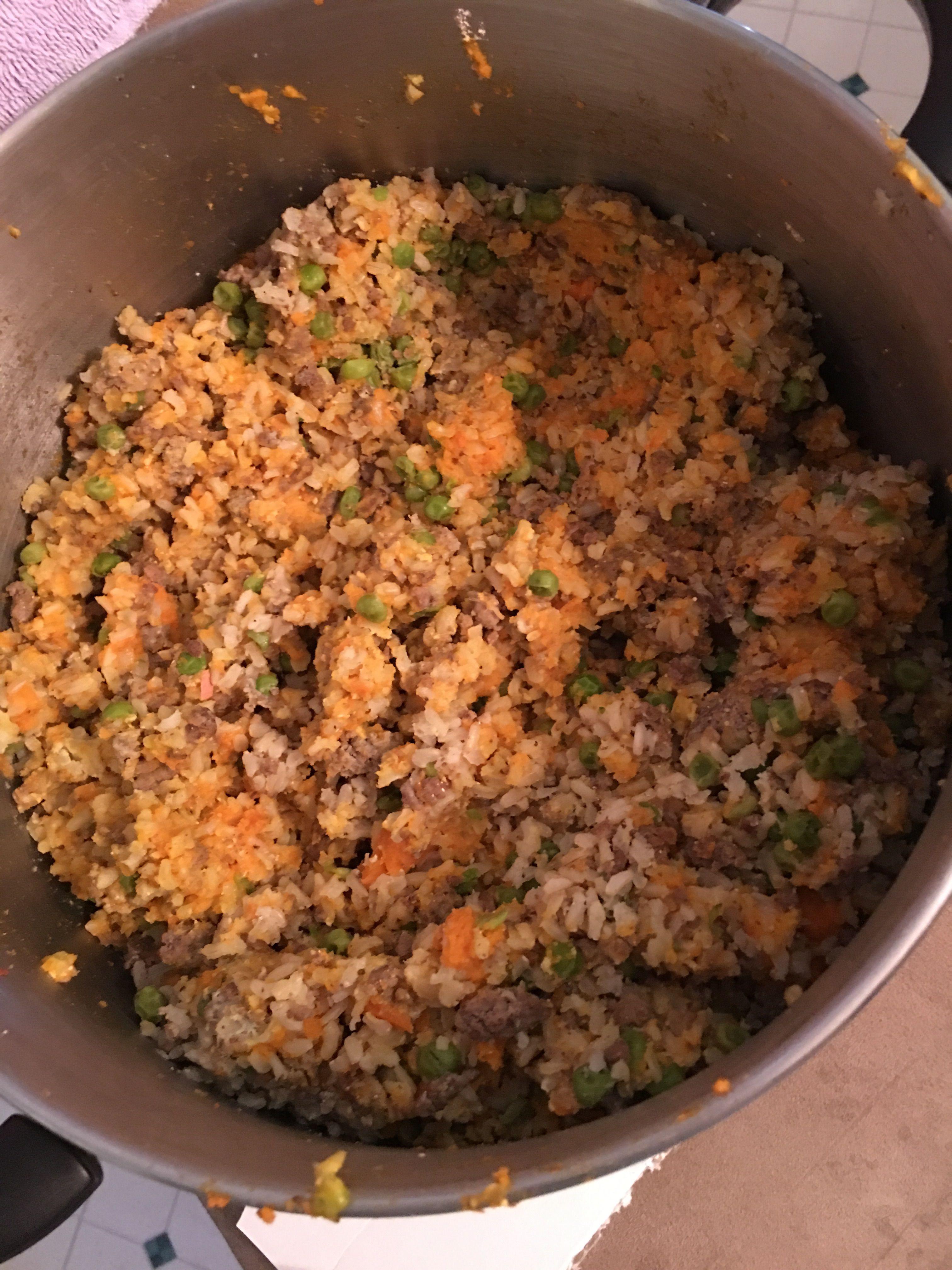 Homemade Dog Food Recipe Homemade Dog Food Dog Food Recipes