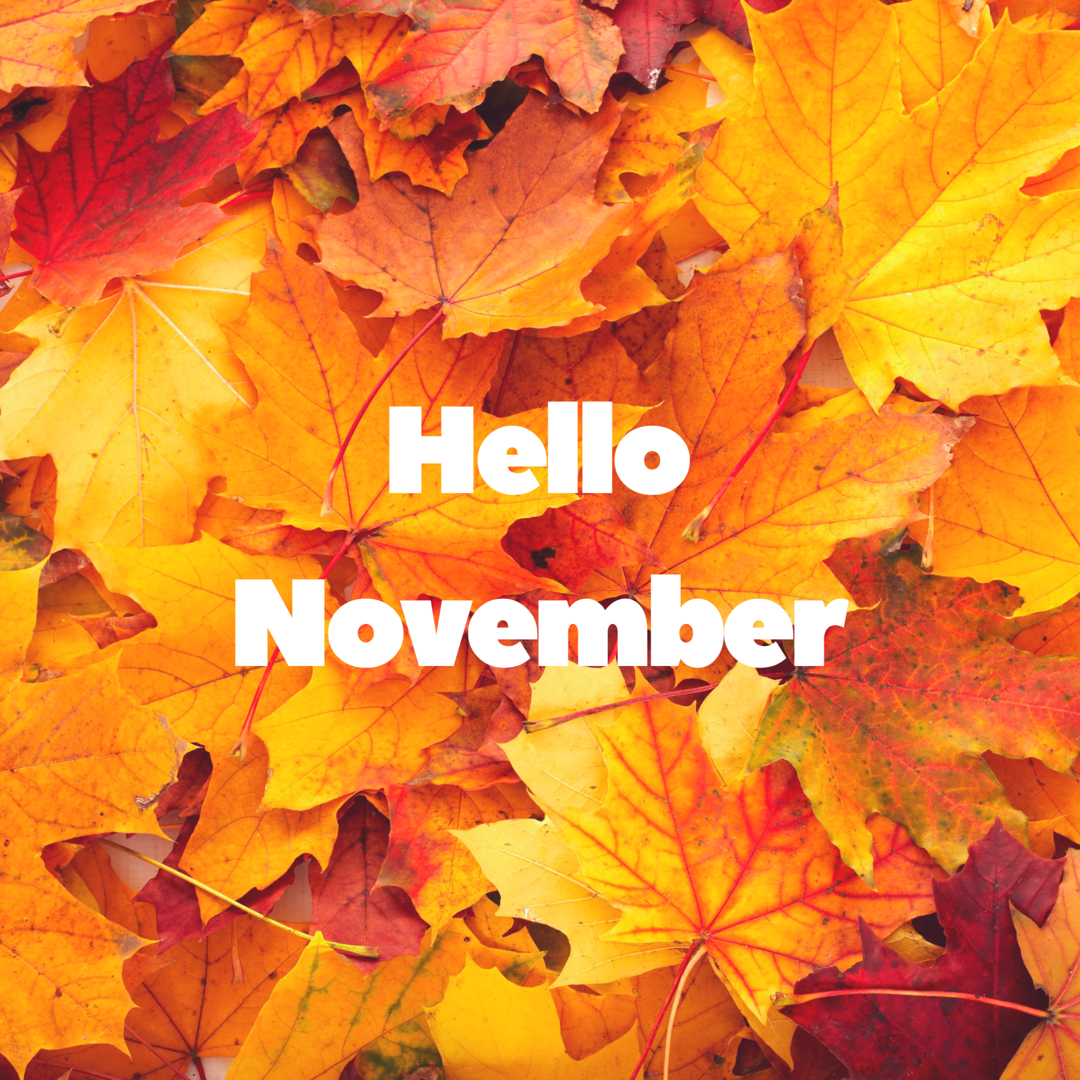 #November . . . #lularoe #fall #holidays #seasons #celebrate #love #live #laugh #lovelife #livelife #livelovelaugh #enjoy #smile #mom #momlife #mompreneur #joy #happiness #besttime #dowhatyoulove #loveyoudo #beyou #beyourself #beyourownkindofbeautiful #beyoutiful #hello #hi #be #youvandoit #ibelieveinyou #hellonovemberwallpaper #November . . . #lularoe #fall #holidays #seasons #celebrate #love #live #laugh #lovelife #livelife #livelovelaugh #enjoy #smile #mom #momlife #mompreneur #joy #happiness #hellonovemberwallpaper