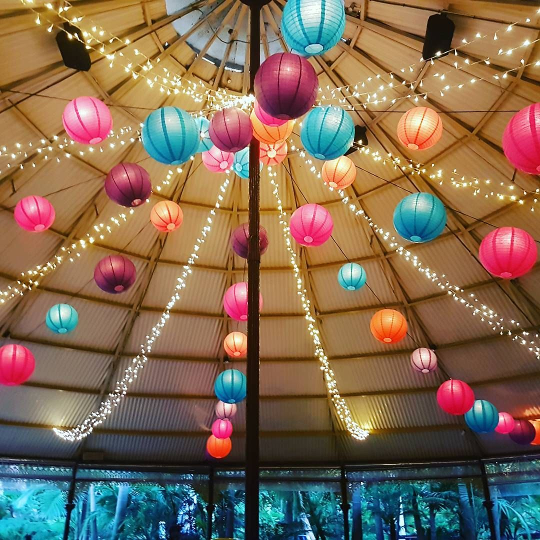 Pink Means Party And So Do Lanterns Fairy Lights Lush