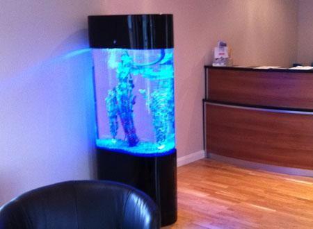 Oval tower designer aquarium click for details bespoke for Tower fish tank