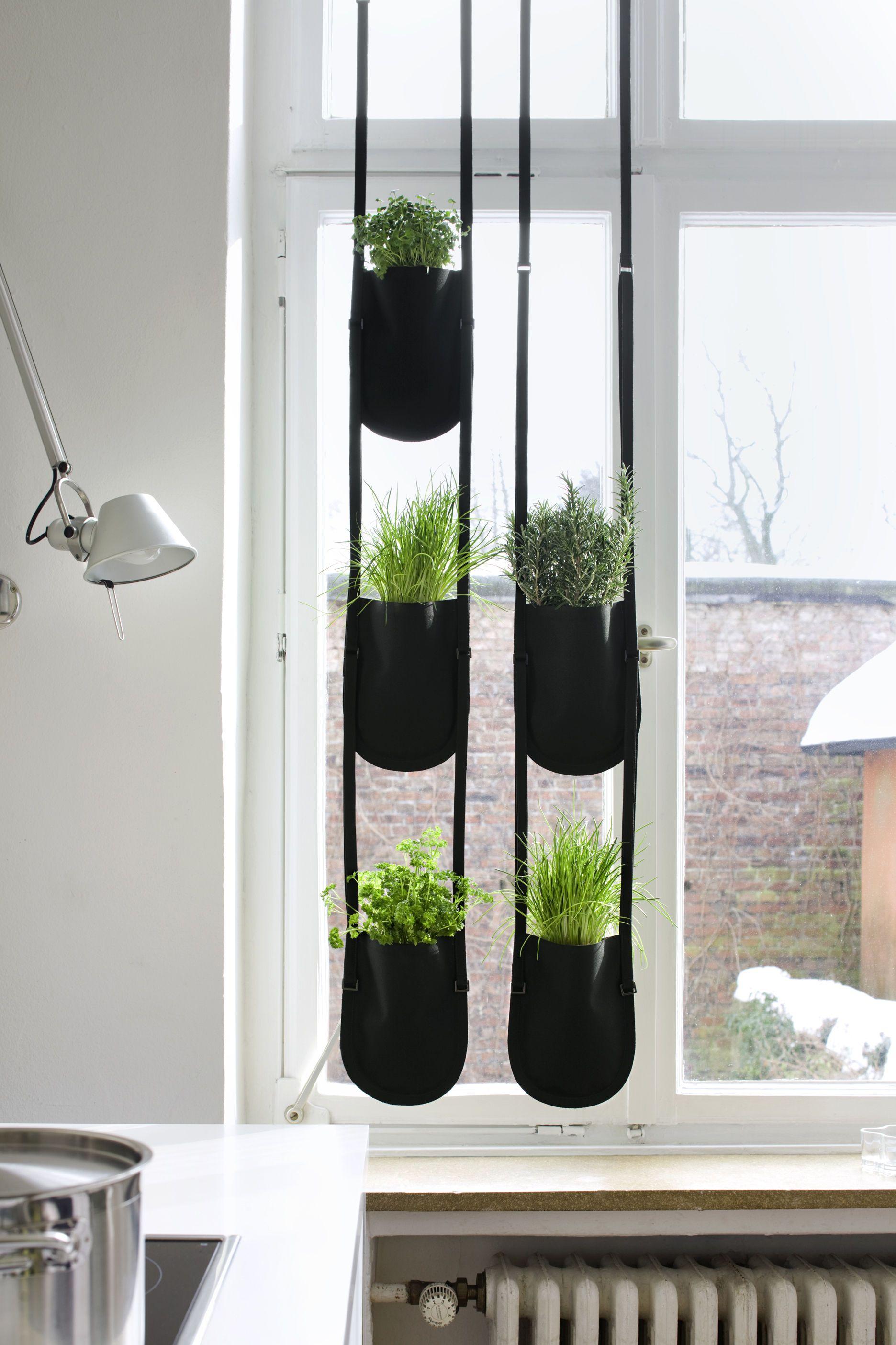 Urban Garden Bag Medium Flowerpot  Plant Bag To Hang