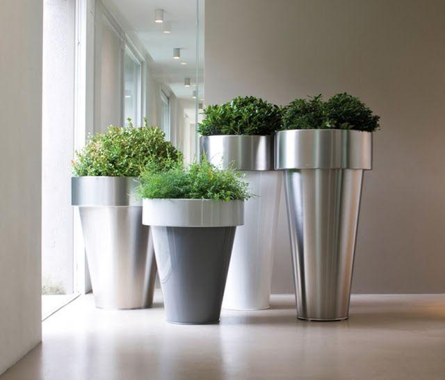 Dreams and coffee plantas y macetas para espacios for Macetas interiores decoracion