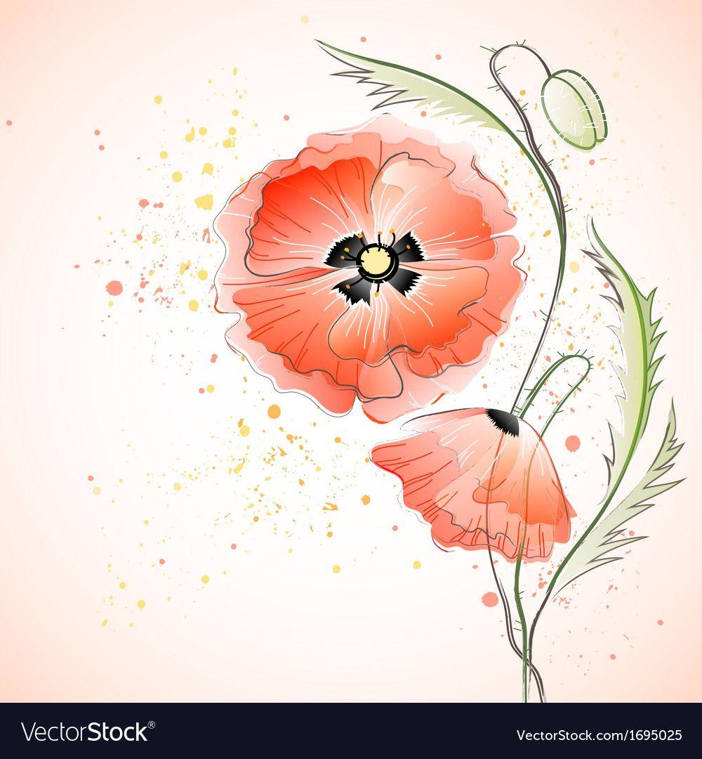 Red Poppy Bouquet vector image on VectorStock in 2020