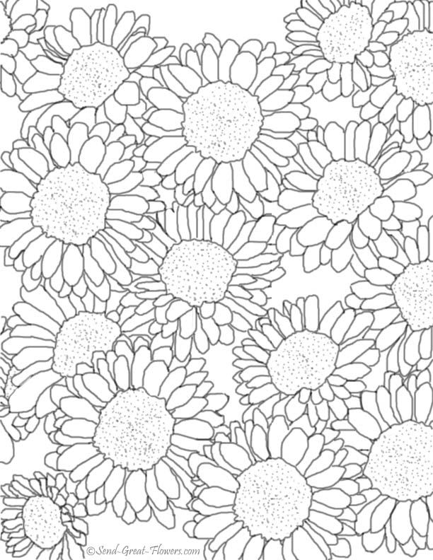 Free Fall Coloring Pages With Full Color Guides Fall Coloring Pages Flower Coloring Pages Free Coloring Pages