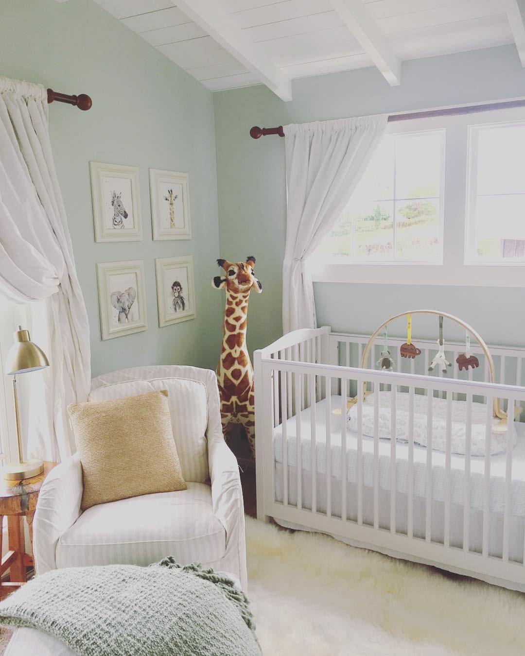 Baby Boy Animal Themed Nursery Baby Animals Safari Themed