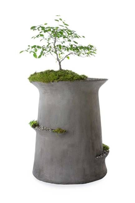 Living Sculptures, Large Containers For Plants And Small Decorative Pots  With Moss And Greenery Are Spectacular Pieces That Add Artworks To Outdoor  Living ...