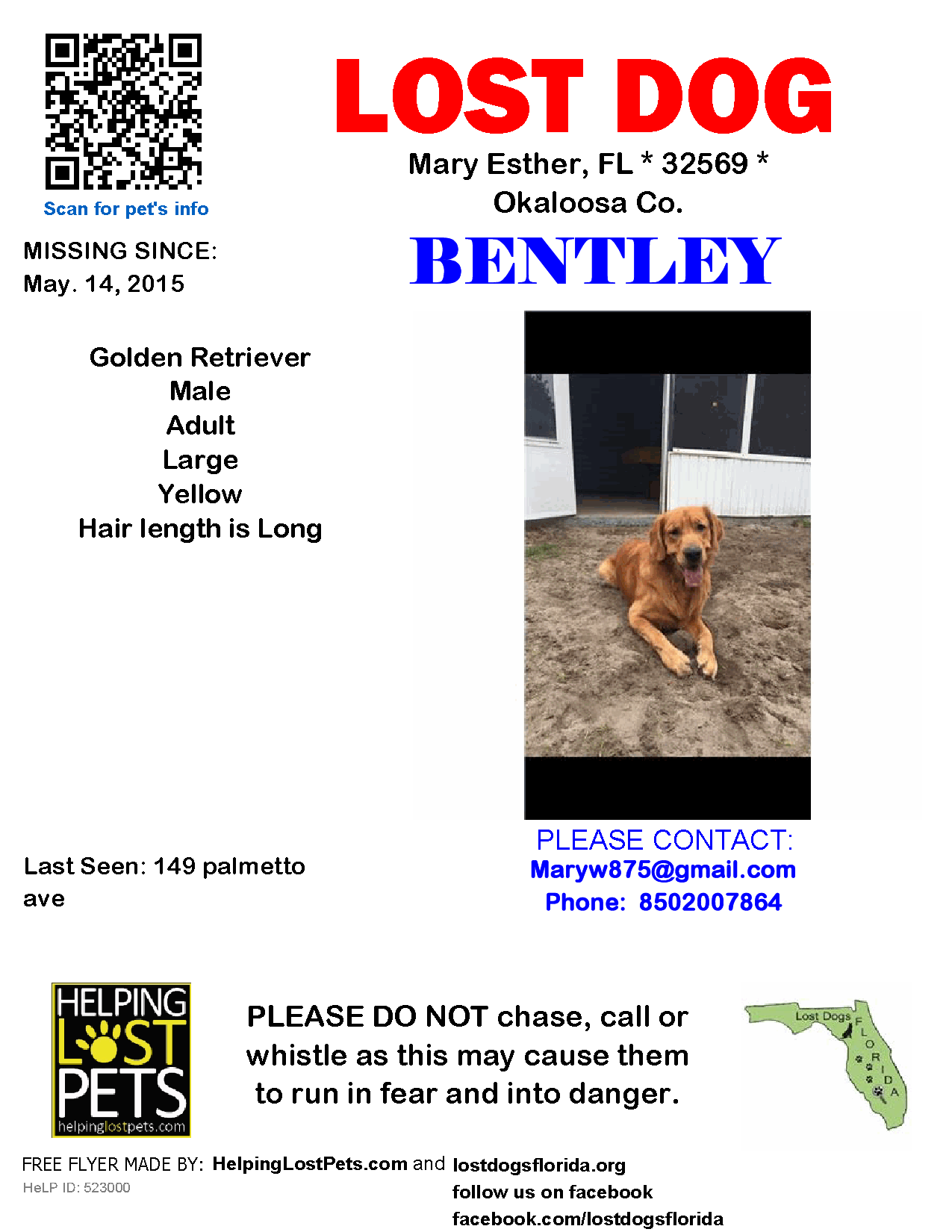 Lost Dog Male Mary Esther Fl Usa 32569 With Images