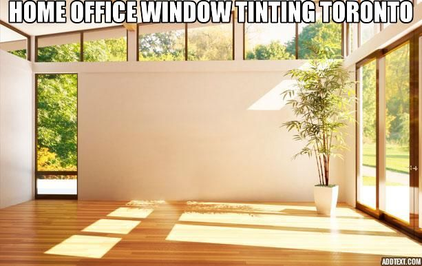 Home Tinted Windows Office Window Window Tinting Services