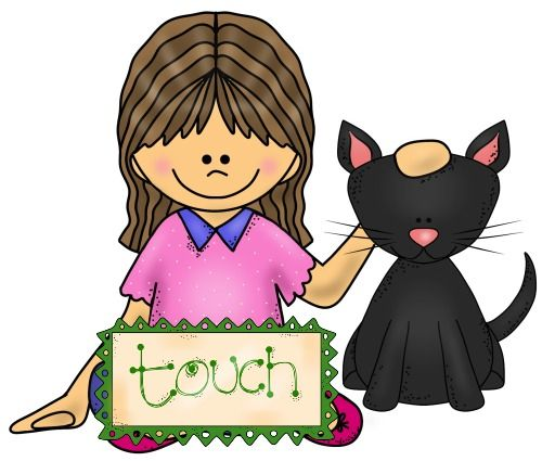 sense of touch Your skin can transmit an amazing amount of information to your brain through  the sense of touch in this lesson, learn about the receptors and.