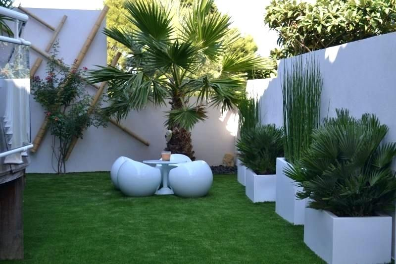 Idee Terrasse Exterieure Contemporaine Beau Decoration Mur ...