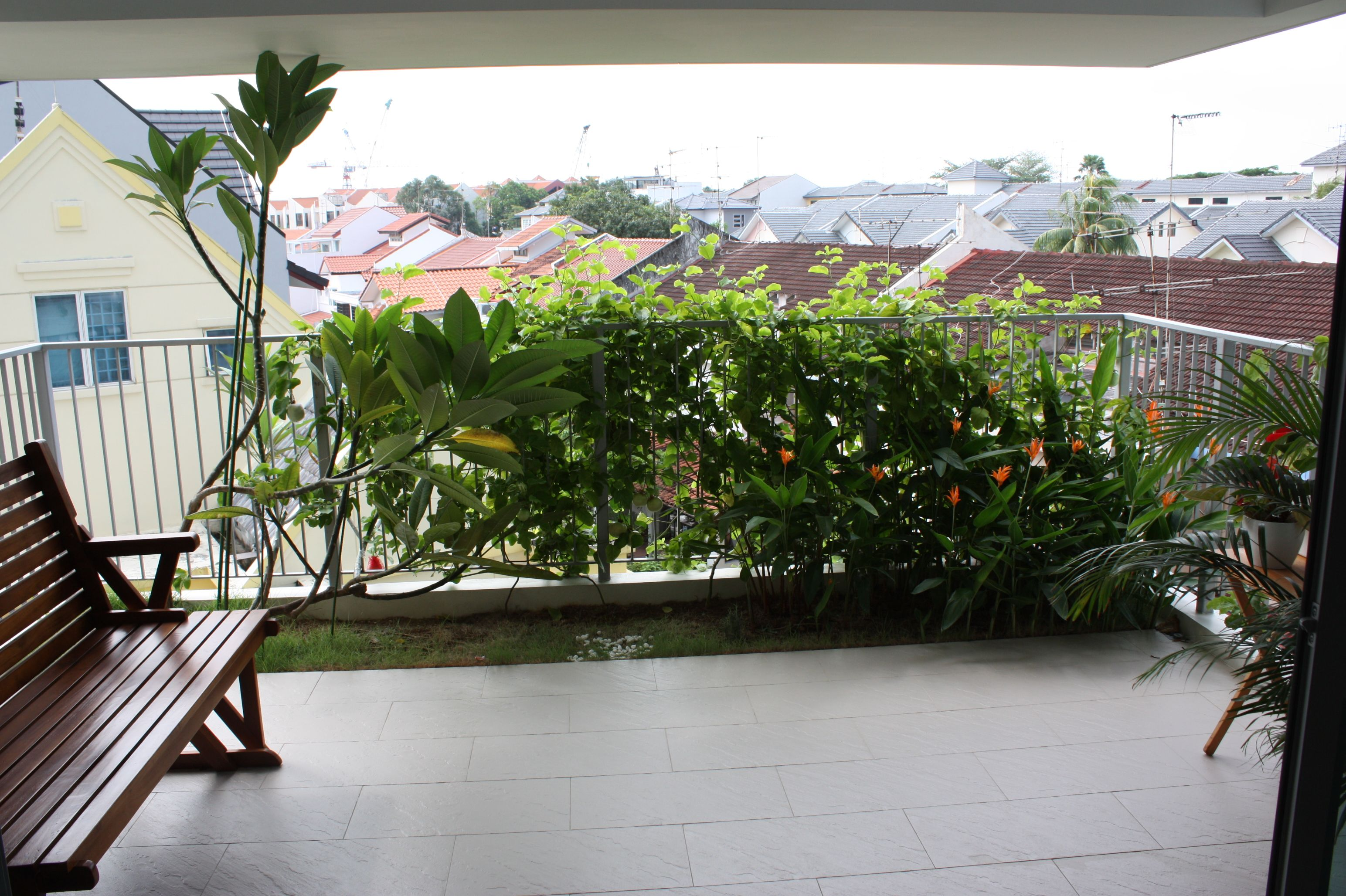 Great Things You Need To Understand About The Balcony Privacy Screen : Privacy  Plants For Balcony. Privacy Plants For Balcony.