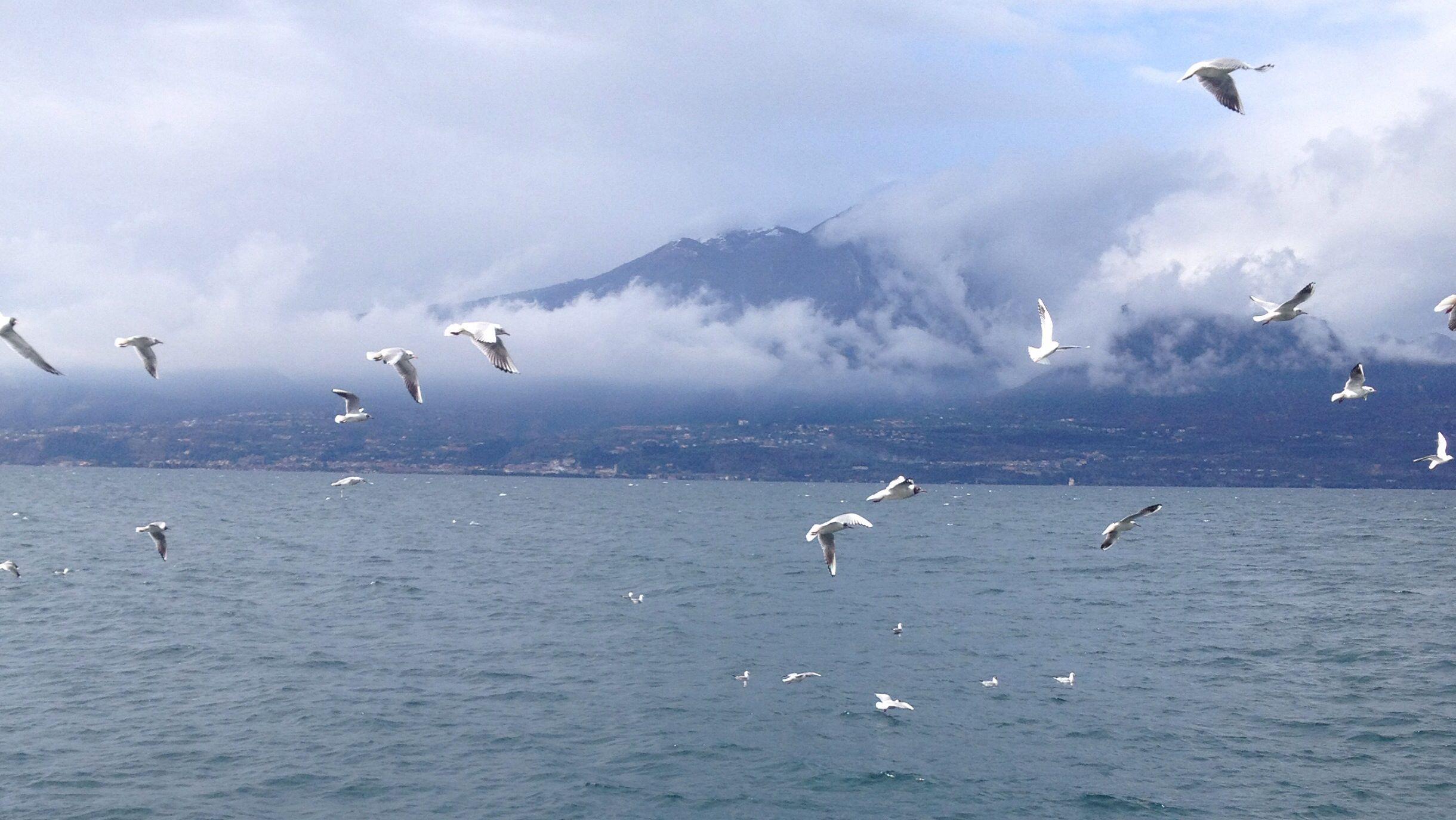 #lagodigarda #gardalake #torridelbenaco #fly cloudy day !