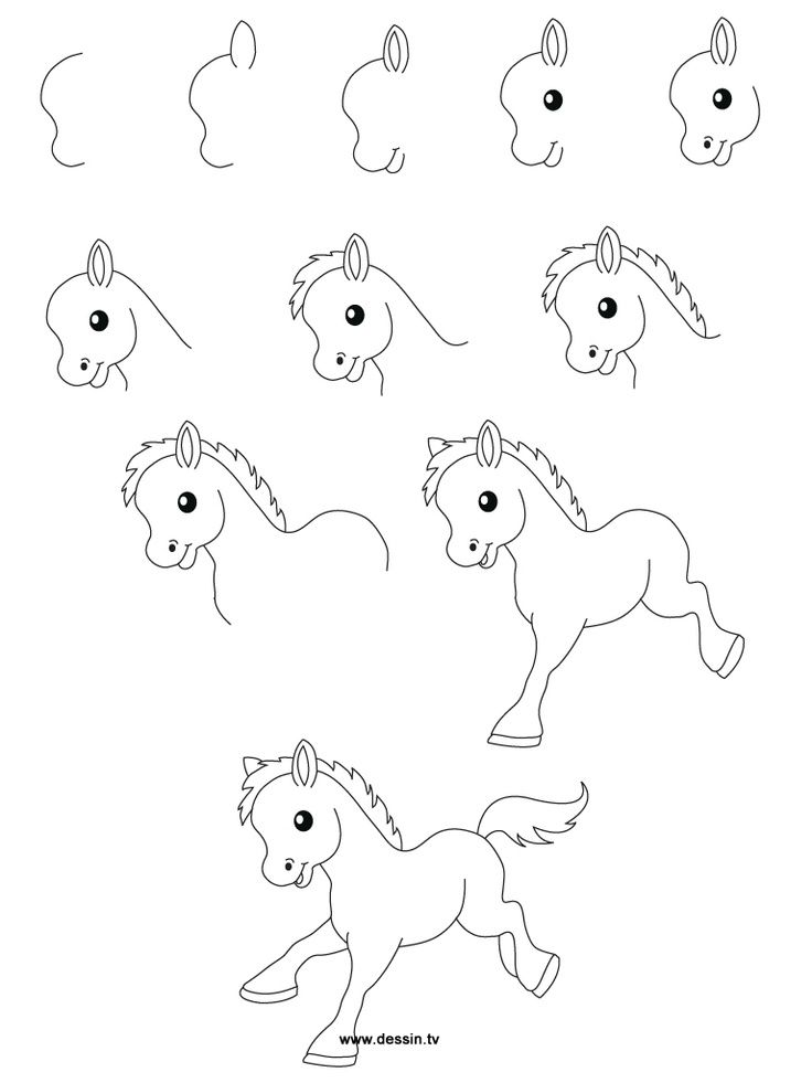 Little Horse Easy Drawings Cute Easy Animal Drawings