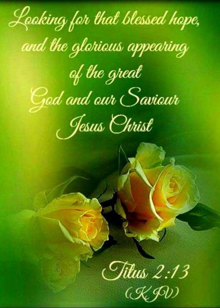 Titus 2:13 KJV | Do you think green & yellow are pretty together ...