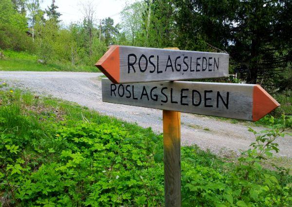 Roslagsleden- Hike Trail from Stockholm to Grisslehamn