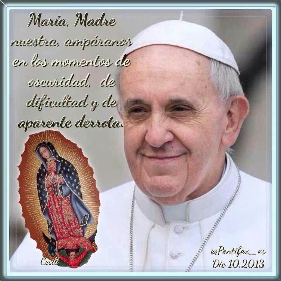 Papa Francisco Papa Francisco Frases Frases Para Papa Oraciones Catolicas