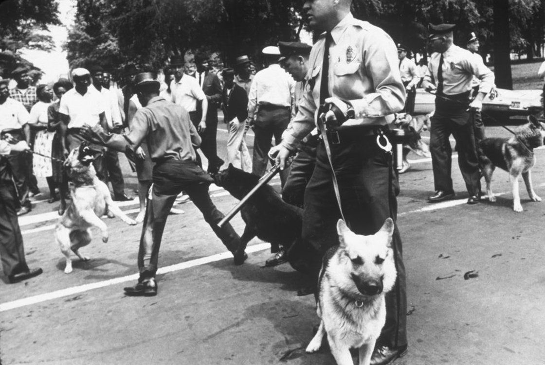 Use Of Fire Hoses And Police Dogs On Black Protesters