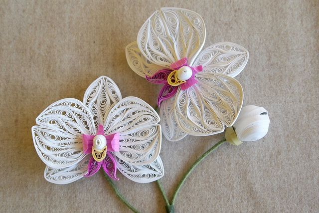 Quilled Orchids Quilling Flower Designs Quilling Designs
