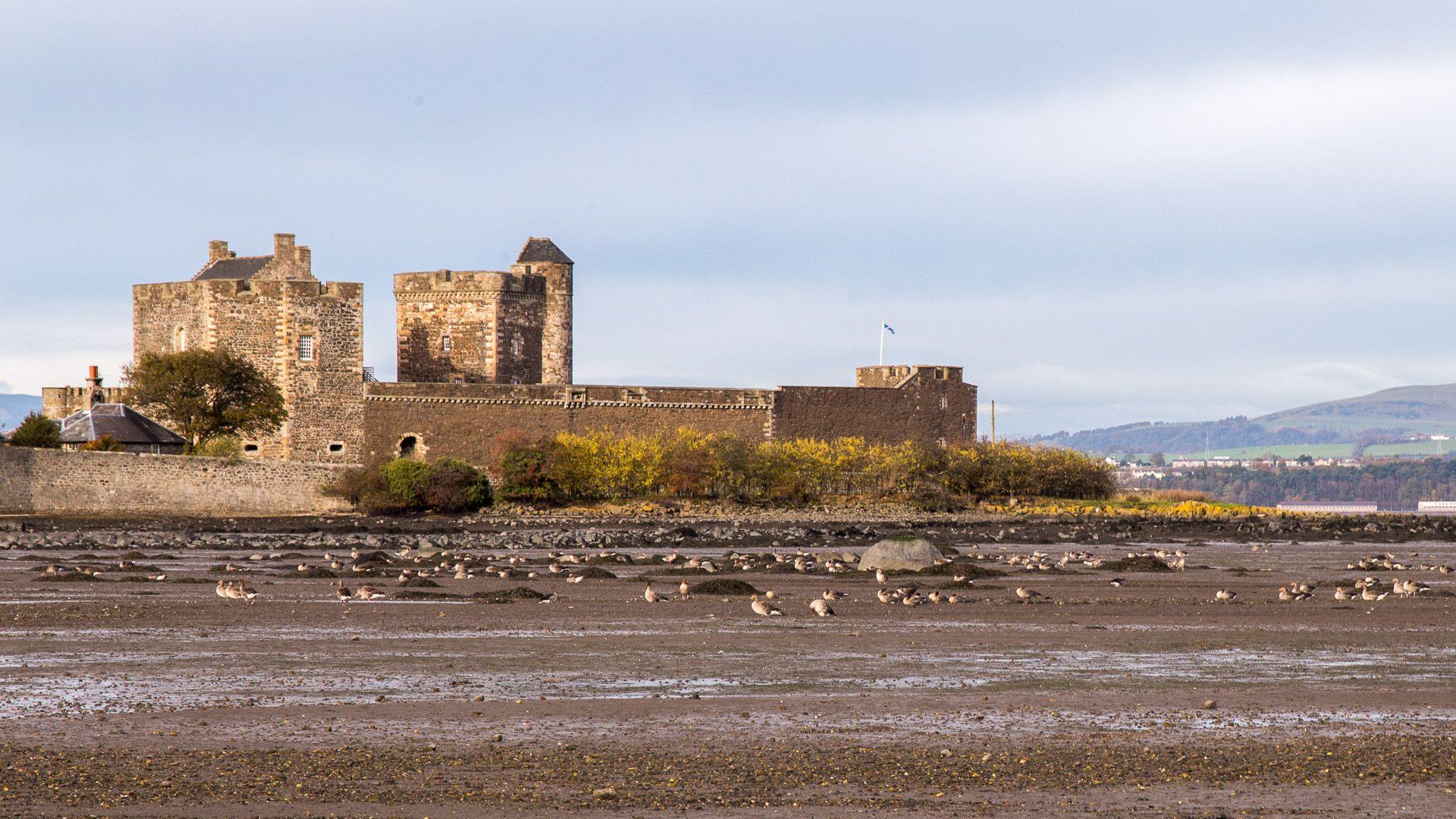 Warum Wurde Castle Abgesetzt