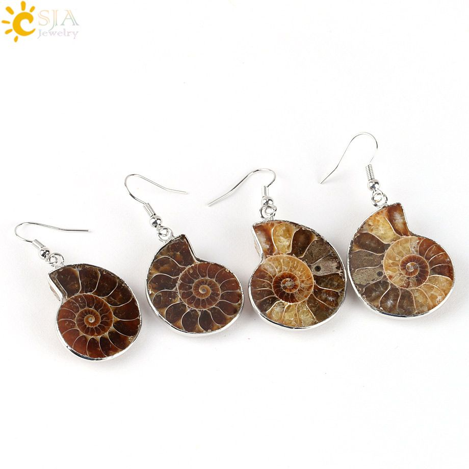 Natural Escargot Ammonite spirale verticille Conch Shell Fossiles Pendentif Dangle Earrings