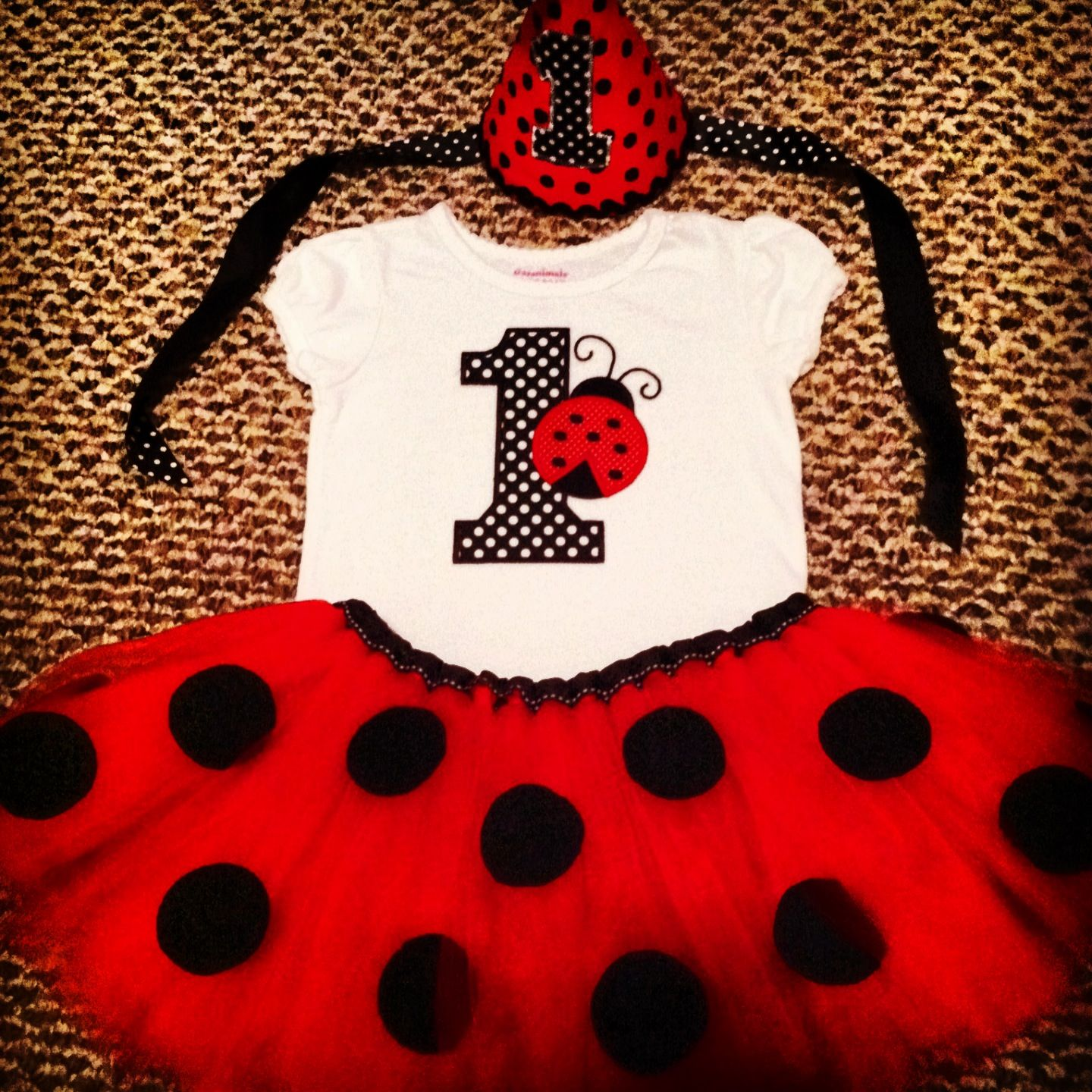 foto de Birthday outfit ladybug first birthday Lady bug bday