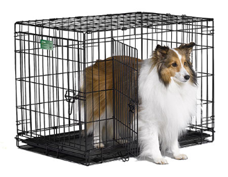 Icrate Double Door Folding Crate Dog Breeds Medium Dog Cages Dog Crate