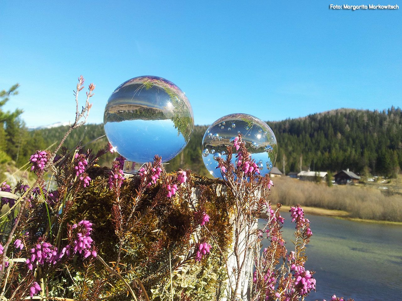 Glaskugeln in der Walstern