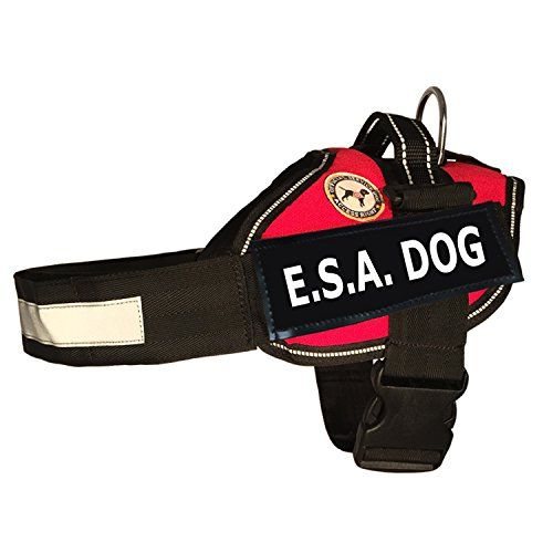 Esa Dog Vest Service Rights Booklet