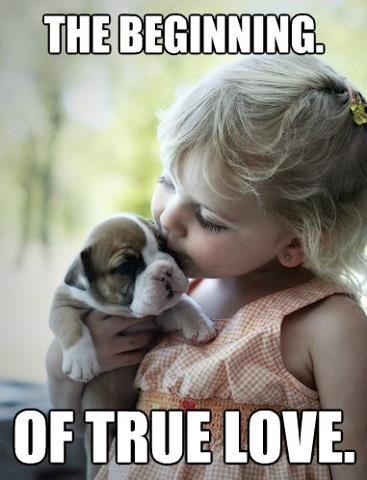 Un amor verdadero ♥◡♥