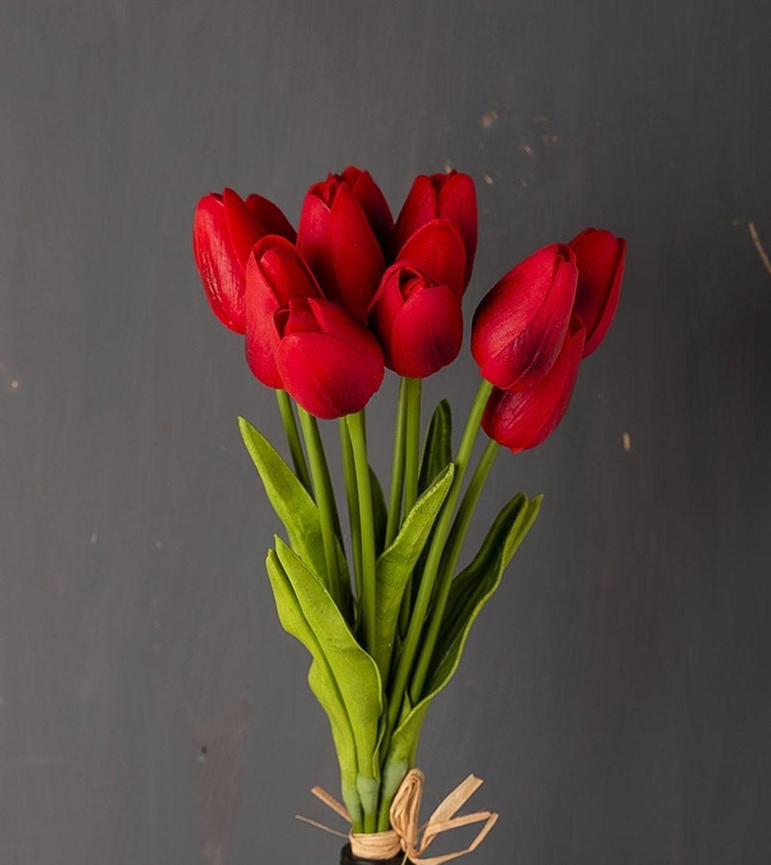 باقة ورد توليب احمر Plants