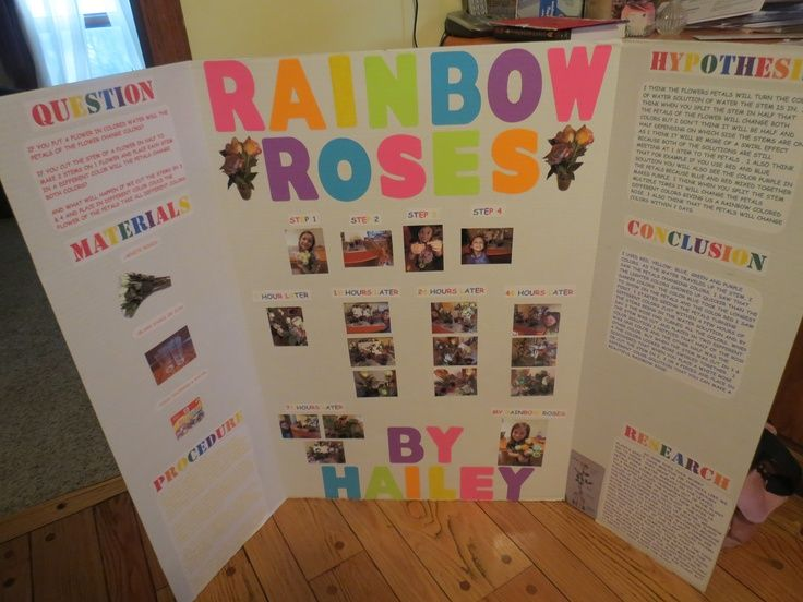 Pin By Mary Andrews On Science Fair Kids Science Fair