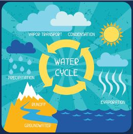 images about water cycle on pinterest   water cycle        images about water cycle on pinterest   water cycle  interactive learning and cloud