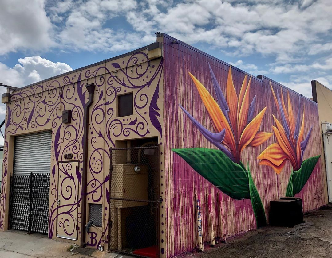 "Beth Emmerich on Instagram: ""Filigree and Flowers in Lemon Grove🧡 @fewandfarwomen #concretejungle #wallporn #mural #muralart #muralist #sandiegomurals #streetart…"""
